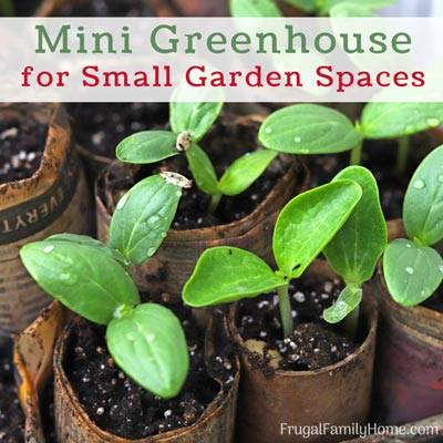 Mini Greenhouse tips Frugal family home
