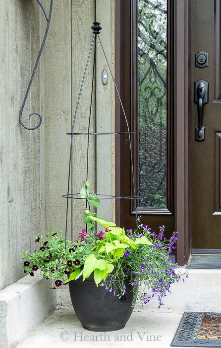 Flower Pot Trellis Flanking Door.