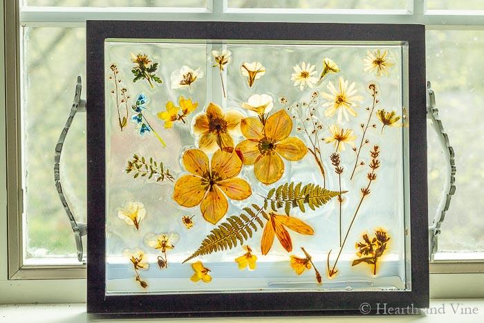Pressed flower resin tray in window