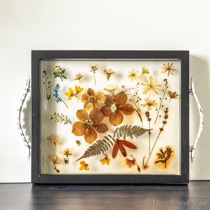 Cured pressed flower resin tray