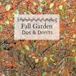 Fall Garden  – Top Dos and Don'ts To Wrap Up the Season