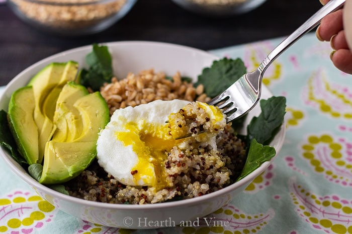 Power grain bowls with egg and Gorganzola