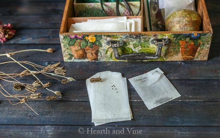 Glassine seed packets
