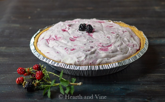 Whole wild black raspberry ice cream pie.