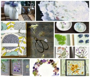 Pressed flower ideas collage