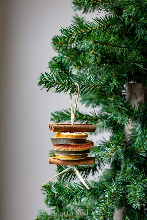Dried fruit ornament on Christmas tree