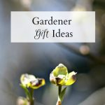 Affordable Gardener Gift Ideas They'll Love