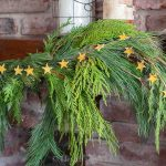 Lemon peel star garland on cedar