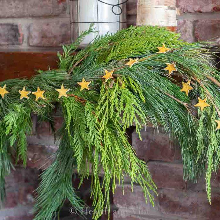 Lemon peel star garland on cedar