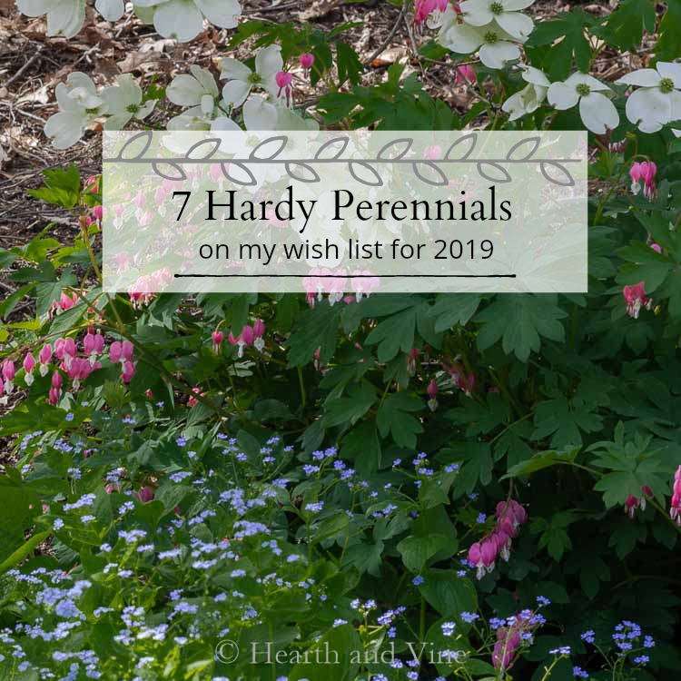 Spring garden picture with 7 hardy perennials caption