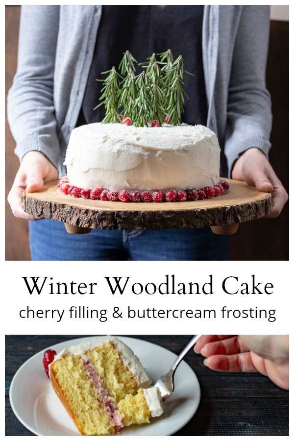 Winter woodland cake and slice