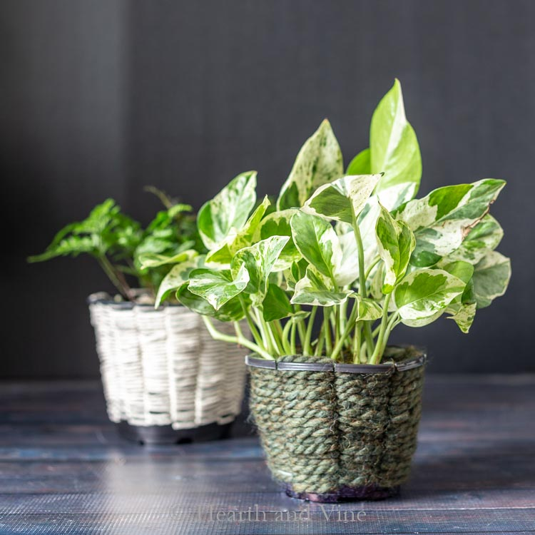Woven planters from nursery pots holding houseplants