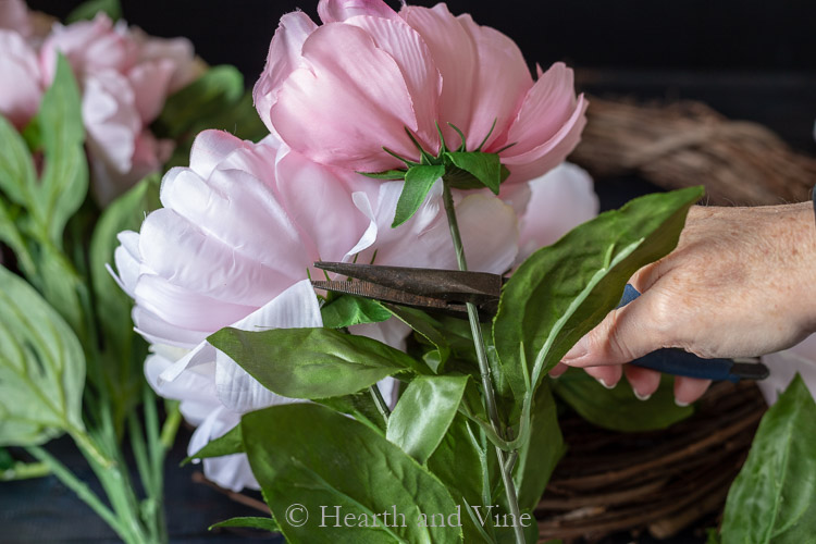 Cutting blooms off stems