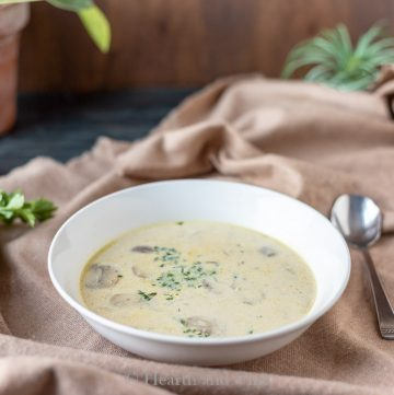 bowl of cream of mushroom soup
