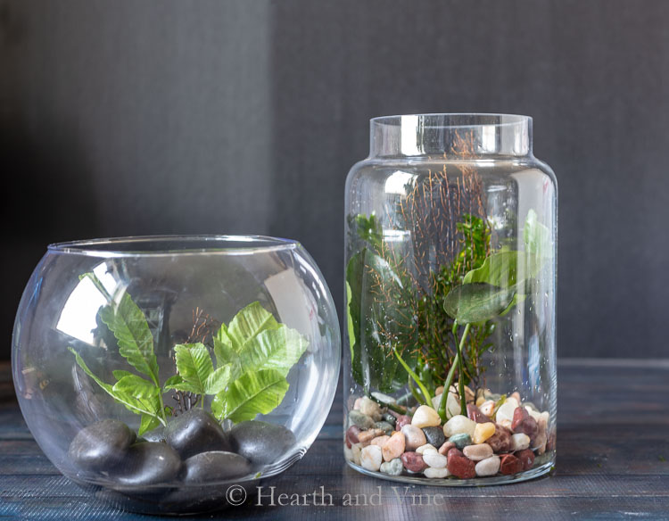 Glass containers with rocks and plants