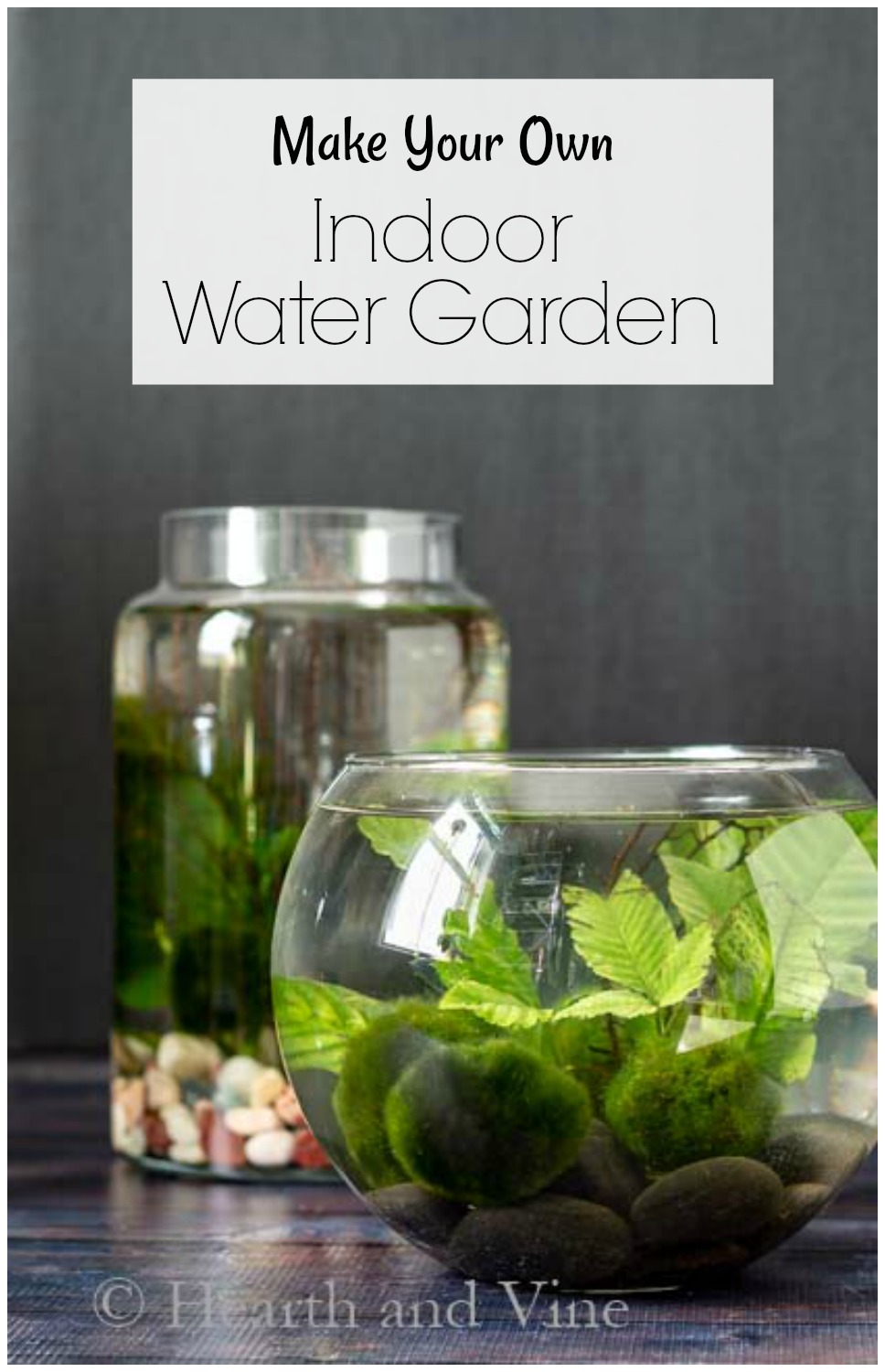 two desktop water gardens