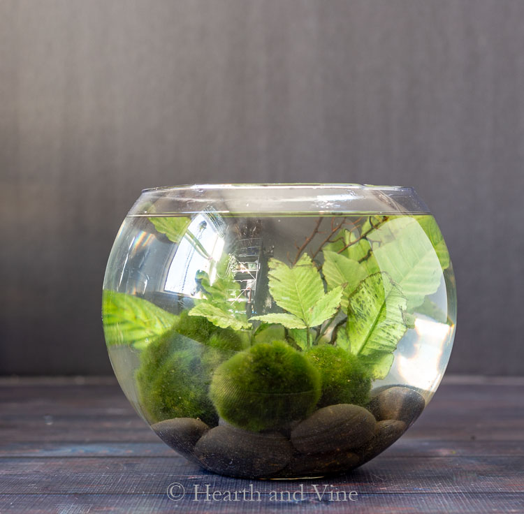 Round indoor water garden