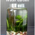 Tall tabletop water garden