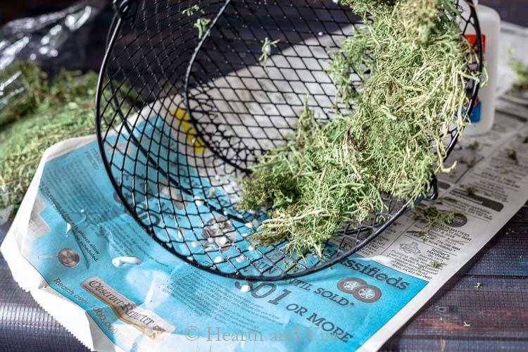moss glued to basket