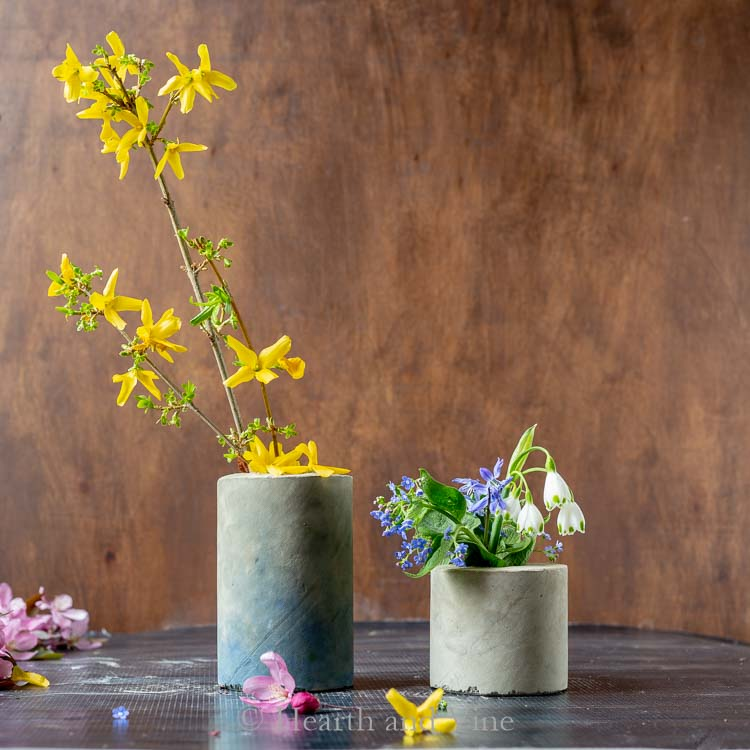 Concrete vases with forstythia branch and flowers
