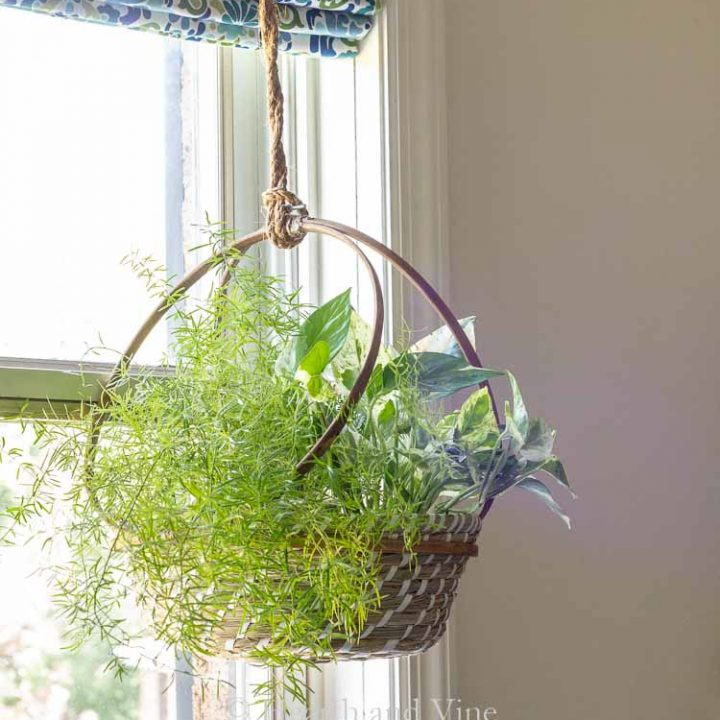 DIY Embroidery Hoop Plant Basket