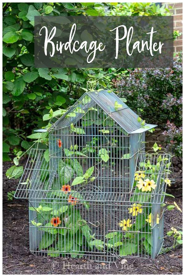 Bird cage garden planter