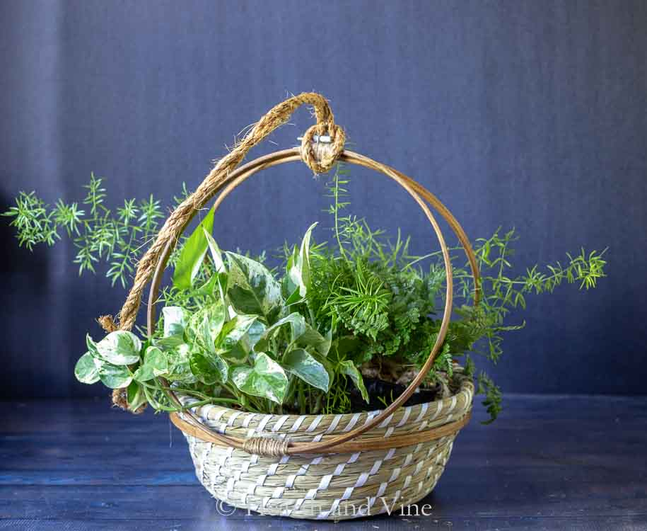 Embroidery hoop basket planter