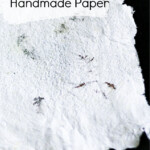 Handmade paper with ferns inside.
