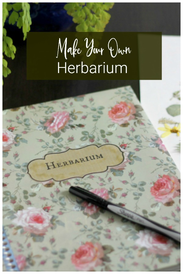 Make your own herbarium
