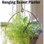 Embroidery hoop basket hanging planter with asparagus ferns and pothos