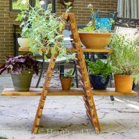 outdoor-plant-stand-house-view