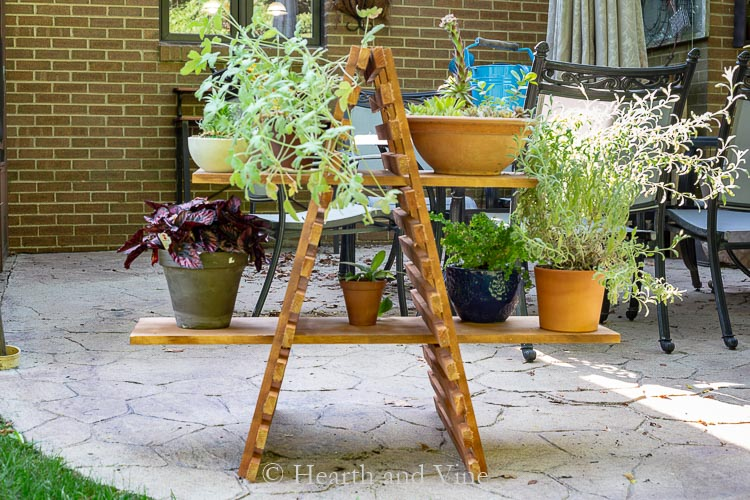 Outdoor plant stand with multiple plants