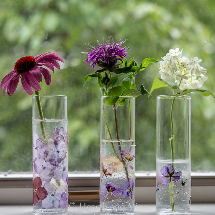 Pressed flower vases