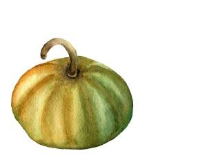 Pumpkin small size