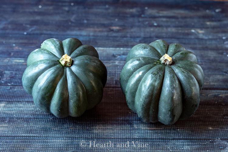 Two green acorn squash