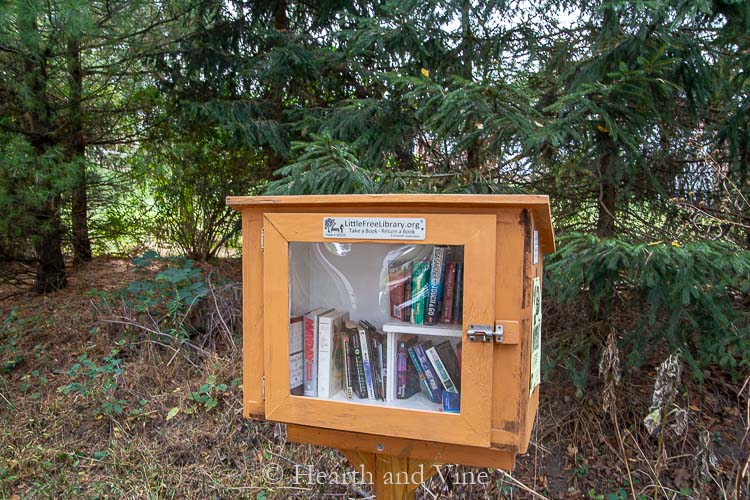 Free library on bike trail