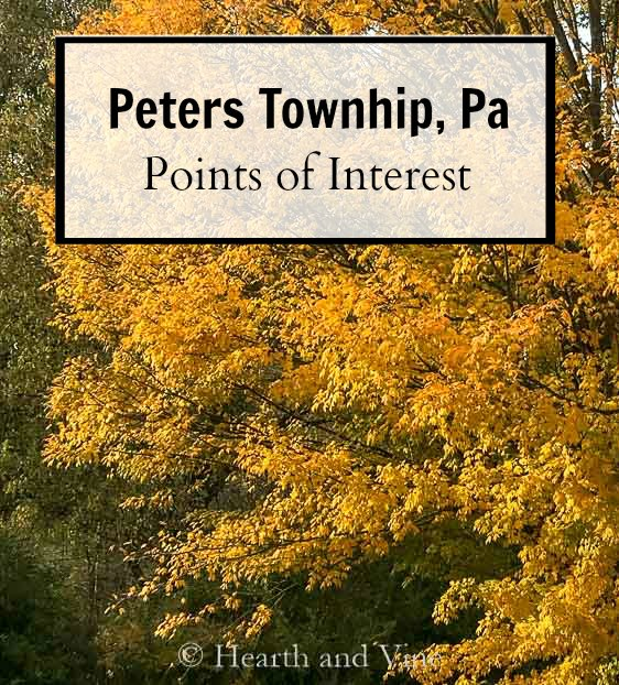 Peters township maple