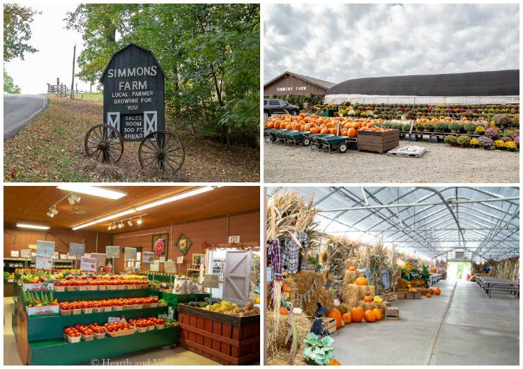 Simmons farm in Peters Township, market and activity center