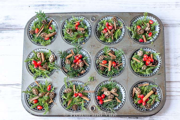 Muffin tin cups with pine sprigs, dogwood berries and cinnamon