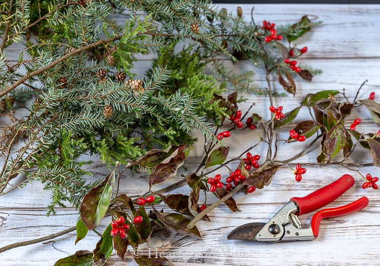 Cut pine branches and dogwood berries