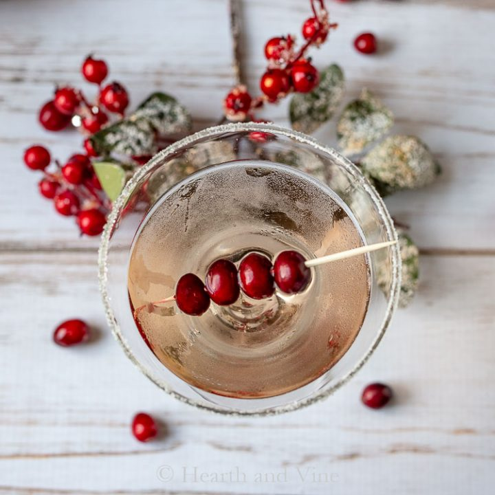 Merry Berry Martini Recipe