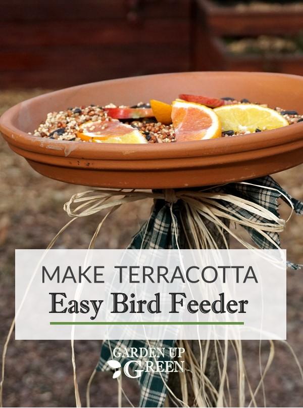 Easy Terracotta Saucer Bird Feeder