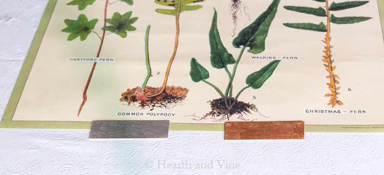 Gray and brown stain on balsa cuttings.