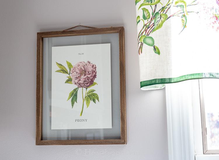 Frames peony print