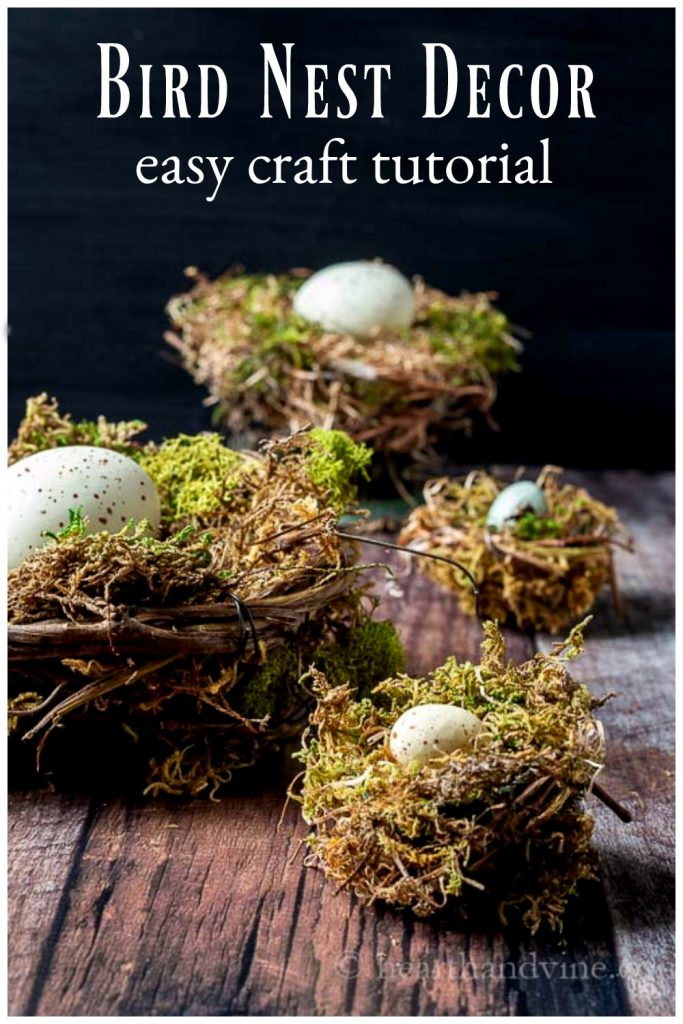 DIY bird nest craft