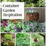 Gallery of container gardens