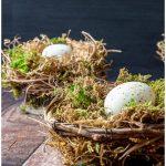2 birds nests