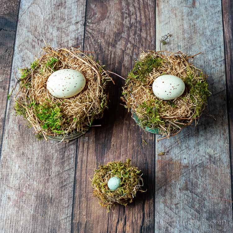 Three handmade bird nests