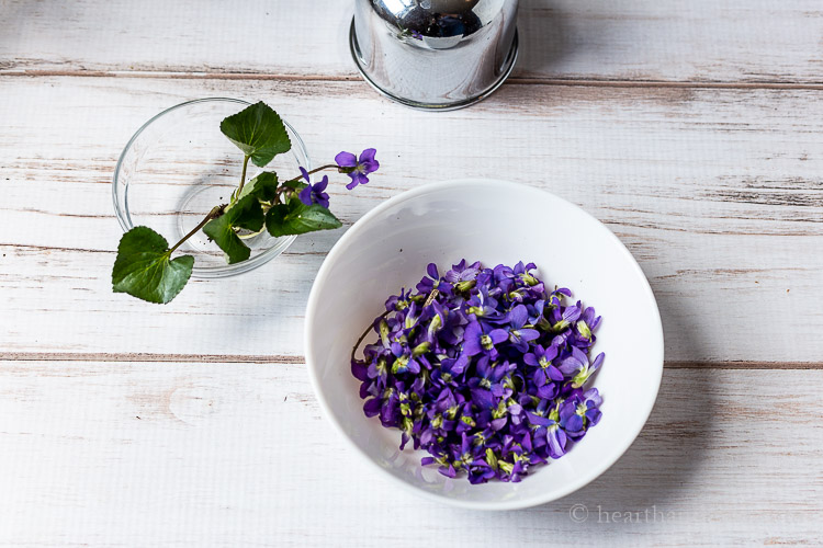 Wild violets in a bowl