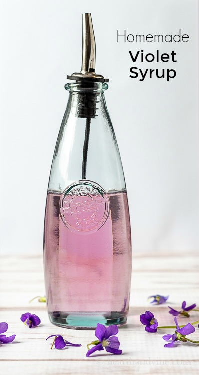 Homemade wild violet syrup in a pouring bottle
